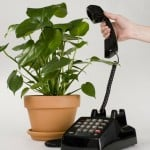 plants making phone calls