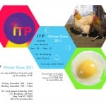 ITP_Winter_Show_24